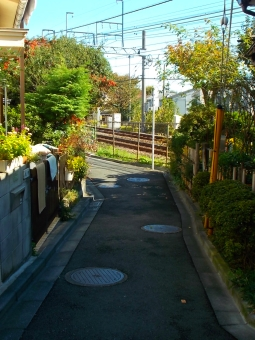 25 Narrow Road (Setagaya ku)