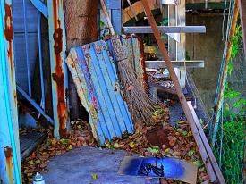 45 Backyard (2)